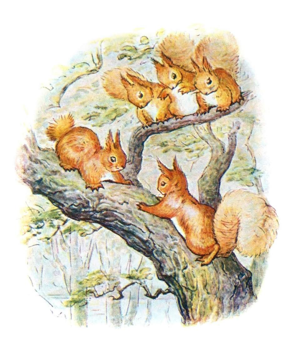 Illustration from 'Squirrel Nutkin' by Beatrix Potter