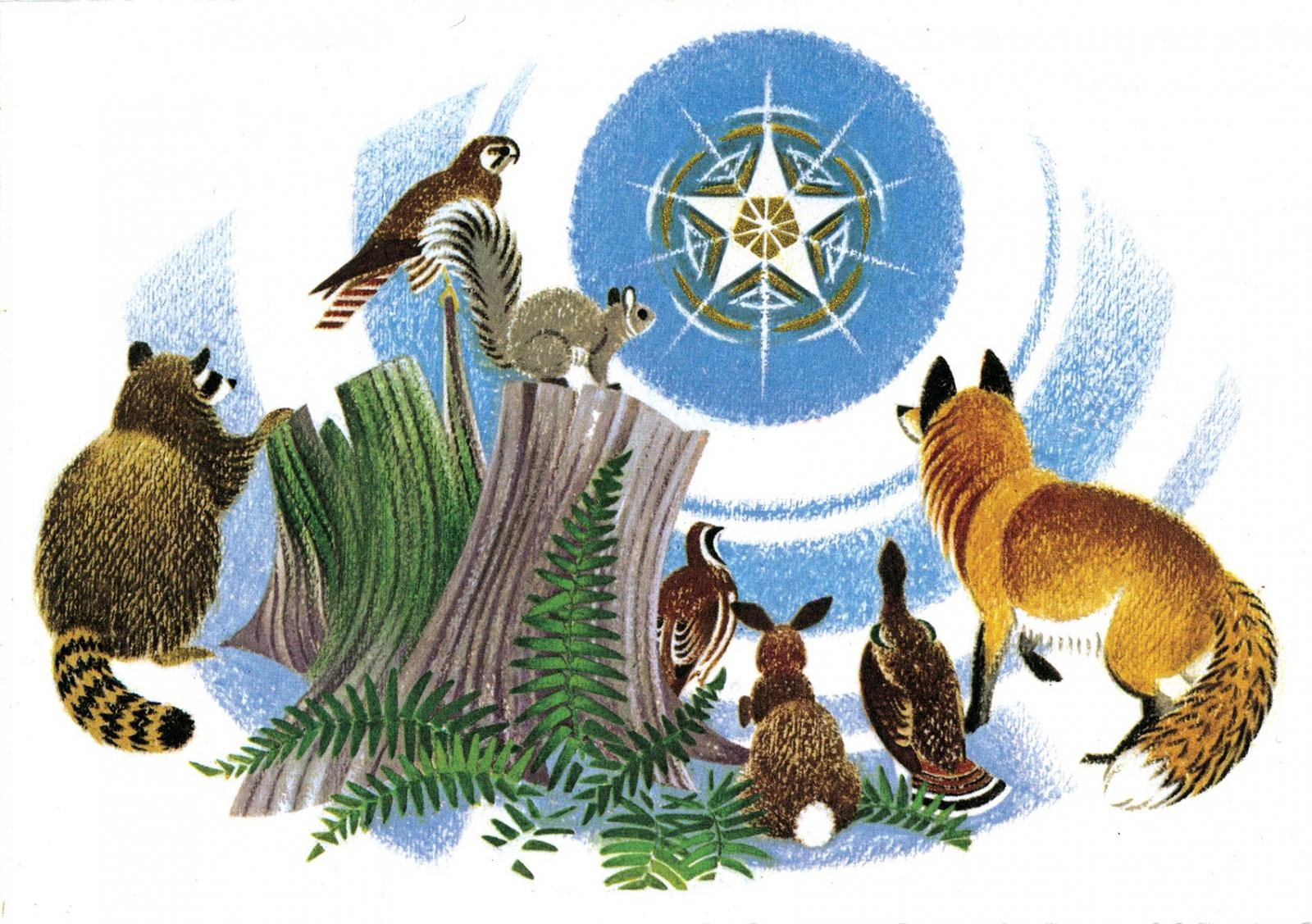 Animals looking at the Christmas Star