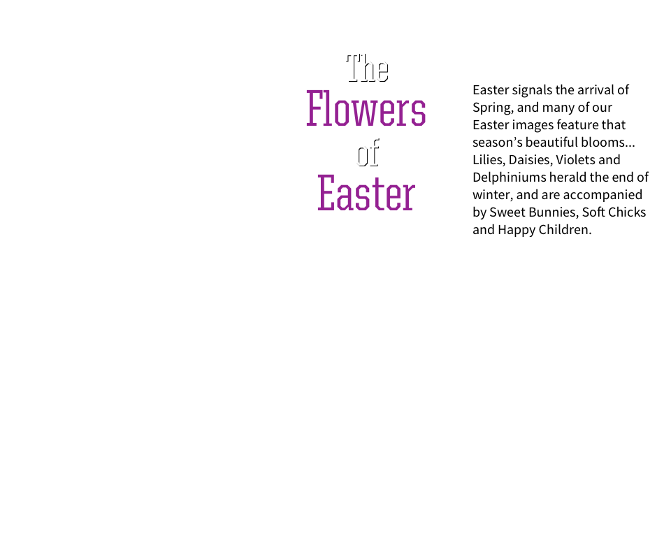 The Flowers at Easter. Easter signals the arrival of Spring, and many of our Easter images feature that season's beautiful blooms. Lilies, daisies, violets and delphiniums herald the end of winter, and are accompanied by sweet bunnies, soft chicks and happy children.