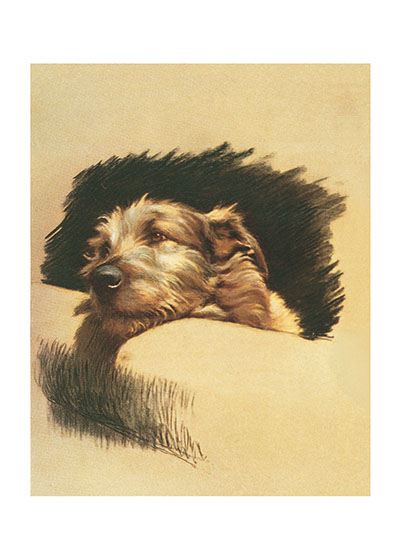 Mickey the Wolfhound by Cecil Aldin