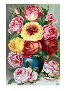 Roses in a Blue Vase (Flowers Greeting Cards)