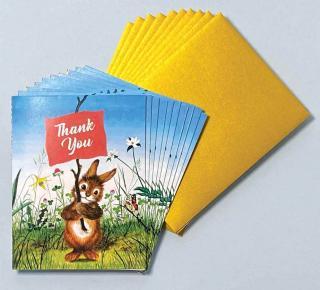 Rabbit with Sign - Box (Packaged and Boxed Thank You Greeting Cards)